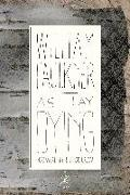 Cover-Bild zu Faulkner, William: As I Lay Dying