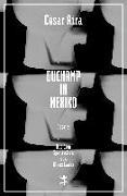 Cover-Bild zu Aira, César: Duchamp in Mexiko