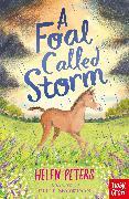 Cover-Bild zu Peters, Helen: A Foal Called Storm