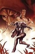 Cover-Bild zu Maberry, Jonathan (Ausw.): Black Panther: Doomwar