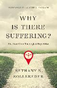 Cover-Bild zu Sollereder, Bethany N.: Why Is There Suffering?