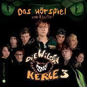 Cover-Bild zu Speulhof, Barbara van den: Die Wilden Kerle 3 (Audio Download)