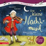 Cover-Bild zu Eine kleine Nachtmusik von Janisch, Heinz