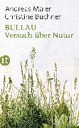 Cover-Bild zu Maier, Andreas: Bullau (eBook)