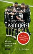 Cover-Bild zu Teamgeist von Zeyringer, Jörg