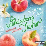 Cover-Bild zu Dave, Laura: Ein wunderbares Jahr (Audio Download)