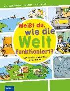 Cover-Bild zu Küntzel, Karolin: Weißt du, wie die Welt funktioniert?