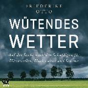 Cover-Bild zu Wütendes Wetter (Audio Download) von Otto, Friederike