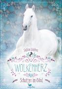Cover-Bild zu Giebken, Sabine: Wolkenherz - Schatten im Wind - Band 3