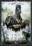 Cover-Bild zu Giebken, Sabine: PaNia - Die Wächter der Windpferde