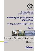 Cover-Bild zu Assessing the growth potential of small firms (eBook) von Schmid, Christoph