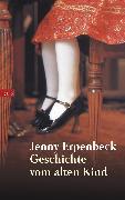 Cover-Bild zu Erpenbeck, Jenny: Geschichte vom alten Kind (eBook)