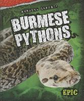 Cover-Bild zu Oachs, Emily Rose: Burmese Pythons