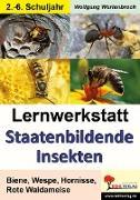 Cover-Bild zu Lernwerkstatt - Staatenbildende Insekten