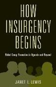Cover-Bild zu Lewis, Janet I.: How Insurgency Begins