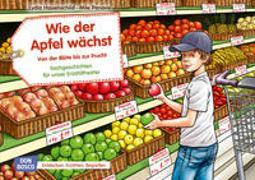 Cover-Bild zu Hauenschild, Lydia: Wie der Apfel wächst. Von der Blüte bis zur Frucht. Kamishibai Bildkartenset