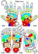 Cover-Bild zu Reflexzonenübersicht - Füße, Hände und Ohr von Aeckersberg, Tanja