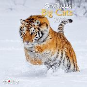 Cover-Bild zu Big Cats 2020 Int.