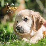 Cover-Bild zu Dogs 2020 Int.