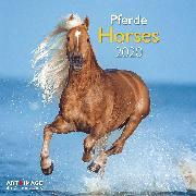 Cover-Bild zu Horses 2020 Int.