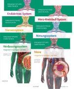 Cover-Bild zu Paket Organsysteme von Elsevier GmbH (Hrsg.)