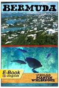 Cover-Bild zu Bermuda (English Edition) (eBook) von Velbinger, Marting