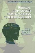 Cover-Bild zu Perinatal Brain Damage