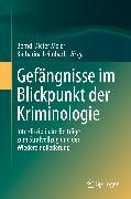 Cover-Bild zu Gefängnisse im Blickpunkt der Kriminologie (eBook) von Meier, Bernd-Dieter (Hrsg.)