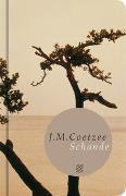 Cover-Bild zu Schande von Coetzee, J.M.