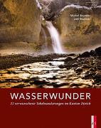 Cover-Bild zu Wasserwunder von Brunner, Michel