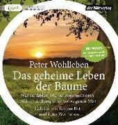 Cover-Bild zu Wohlleben, Peter: Das geheime Leben der Bäume