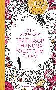 Cover-Bild zu Professor Chandra folgt dem Flow (eBook) von Balasubramanyam, Rajeev