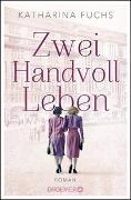 Cover-Bild zu Zwei Handvoll Leben von Fuchs, Katharina