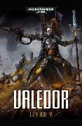 Cover-Bild zu Valedor von Haley, Guy