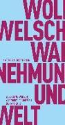 Cover-Bild zu Wahrnehmung und Welt von Welsch, Wolfgang