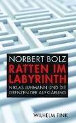 Cover-Bild zu Ratten im Labyrinth von Bolz, Norbert