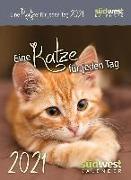 Cover-Bild zu Eine Katze für jeden Tag 2021 Tagesabreißkalender
