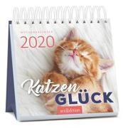 Cover-Bild zu Miniwochenkalender Katzenglück 2020 - kleiner Aufstellkalender mit Wochenkalendarium