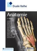 Cover-Bild zu Duale Reihe Anatomie von Aumüller, Gerhard (Beitr.)