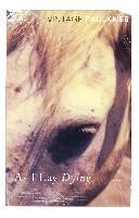 Cover-Bild zu As I Lay Dying (eBook) von Faulkner, William