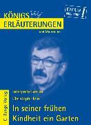 Cover-Bild zu In seiner frühen Kindheit ein Garten von Christoph Hein. Textanalyse und Interpretation (eBook) von Hein, Christoph