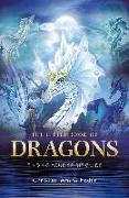 Cover-Bild zu The Little Book of Dragons (eBook) von Fader, Christine Arana