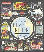 Cover-Bild zu Unser verblüffender Planet Erde (eBook) von Ignotofsky, Rachel