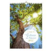 Cover-Bild zu Breitenbach, Roland: Gebete der Bäume 2022