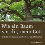 Cover-Bild zu Breitenbach, Roland: Wie ein Baum vor dir, mein Gott