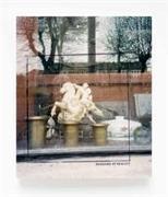 Cover-Bild zu Sebald, W. G.: Shadows of Reality