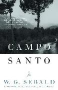 Cover-Bild zu Sebald, W.G.: Campo Santo
