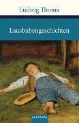 Cover-Bild zu Thoma, Ludwig: Lausbubengeschichten / Tante Frieda