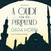 Cover-Bild zu Horn, Dara: A Guide for the Perplexed