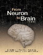 Cover-Bild zu Nicholls, John G.: From Neuron to Brain